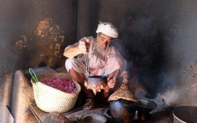 Oman: Rosenblüte im Frühling