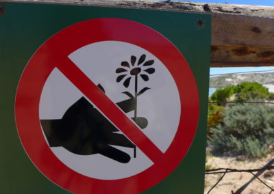 Blumen pflücken ist im Namaqua National Park verboten.